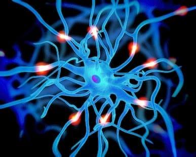Can We Overcome Alzheimer's?