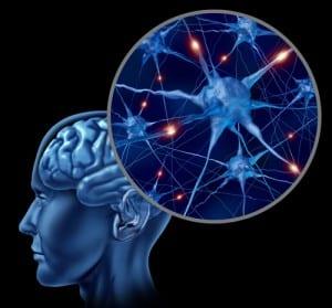 Active Human Neurons