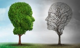 Gut Health And The Two Brains