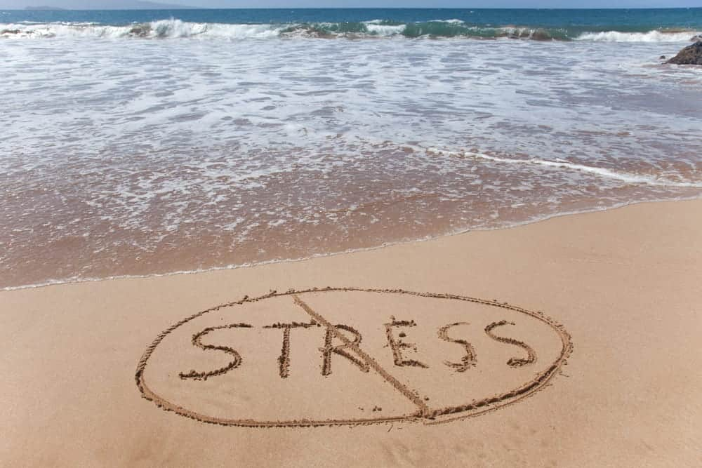 Stress And You