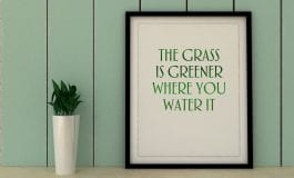 The grass is always greener: a scientific illusion
